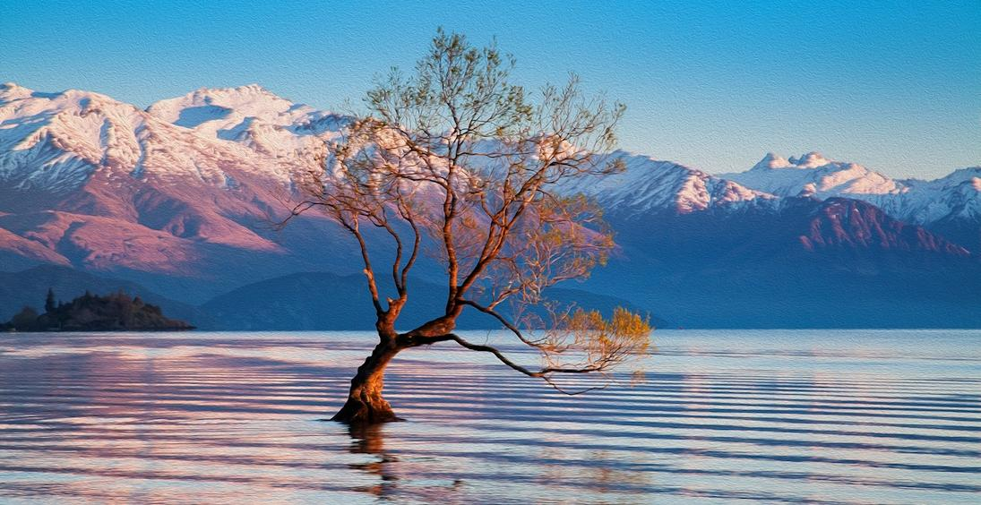 Descobrindo Nova Zelândia