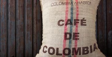 Medellin e a zona do café