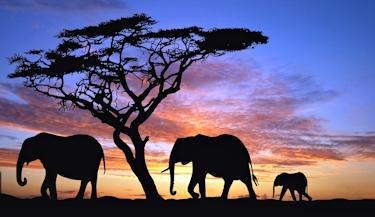 África Clássica