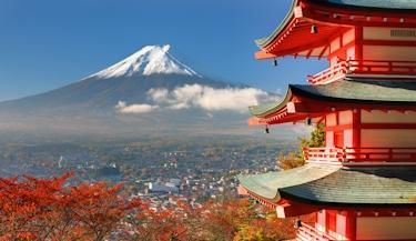 Japão e Coréia do Sul