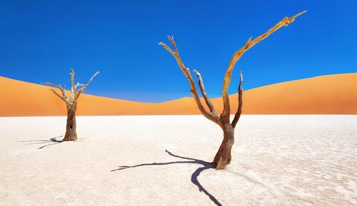 O Melhor da Namíbia