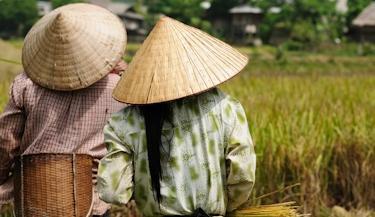Encantos do Vietnã e Camboja